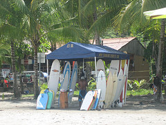 Surfboards for rent in Costa Rica.