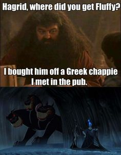 Hagrid, was his hair on fire?