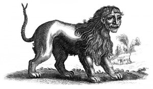 A brass engraving of a manticore by Joannes Jonstonus.